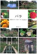 Rosesuzuki