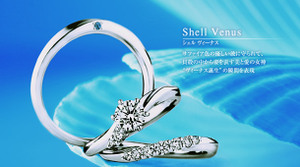 Venus_product01