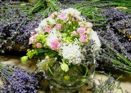 Flower_8