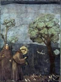 Giotto_1