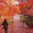 大阪 久安寺