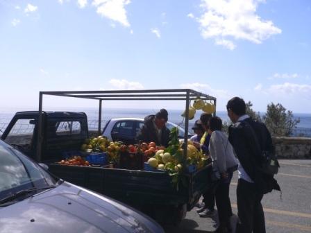 柑橘類が豊富な南部のフルーツ販売車☆