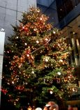Mikimoto Christmas Tree in 2009
