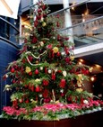 Beautiful Christmas Tree at Bunkamura
