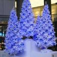 Blue Christmas Tree in Oazo