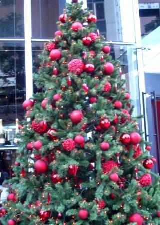 Christmas tree at Maxim