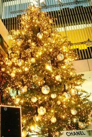 Sony Plaza前  CANEL Christmas Tree